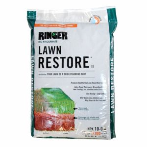 Best Lawn Fertilizer for Autumn